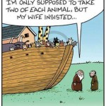 Cats on the Ark